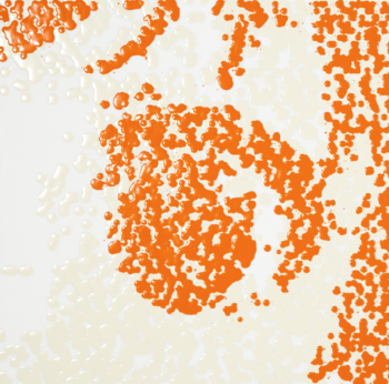 Search?q=Vtuber (Orange)
